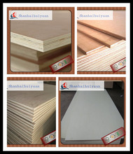 Plywood /color plywood /plywood sheets as buyer request