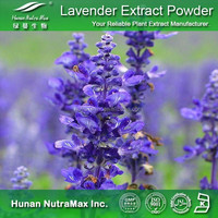 Lavender Extract ,Lavender Extract Powder, Lavender P.E.