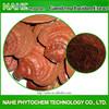 Herbal extract reishi mushroom powder