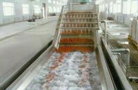 Vegetable, fruit washing equipmentHD69811197