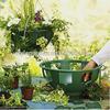 garden flower vegetable hanging basket planter