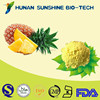 2015 Natural China Supplier Food and Beverage No Pigment Pineapple Juice Powder