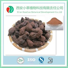 100% Pure Radix Polygoni Multiflori / Polygonum multiflorum Thunb. Root Powder
