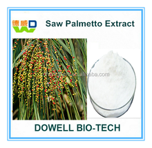 Factory Supply Best High Quality Saw Palmetto Extract