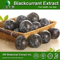 Food Supplement GMP Factory Black Currant Anthocyanin/High Quality Black Currant Seed Extract Powder