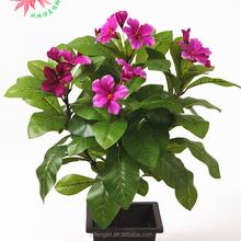 Decoração da de artesanato falso de seda Artificial Floral flor de Bush Hibiscus