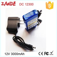 dc-12300 micro rechargable battery 12v 3000mah for security cctv and LED with power supply welcome OEM