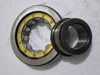 All Types Original Cylindrical Roller Bearings NU1004 Brass Steel Polyamide Cage