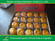 name of imported fruits