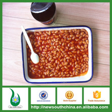 Household fast food item canned white kidney beans cooked with tomato sauce ready to eat