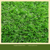 New style artificial playground grass and green color supplier plastic nursery school