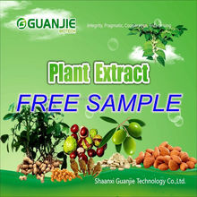 GMP factory supply loquat leaf extract in stock