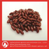 high quality coenzyme Q10 soft softgel capsule 500mg