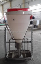 pig equipment dry and wet feeder for fattening pigs
