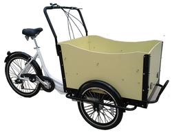 three wheel 250W Electric trike tricycles rickshaw for kids/cargo with CE