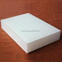 Light weight polypropylene honeycomb sandwich exterior mobile home wall paneling
