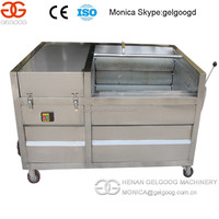 Automatic Big Capacity Pumpkin Washing machine From China