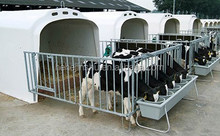 Hot Sale Calf hutches with or without fence