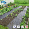PP Non Woven Fabric Agricultural Landscape Weed Control Net