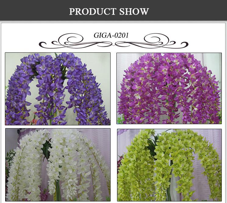 Orchids Wholesale Thailand Flowers Thailand Orchid