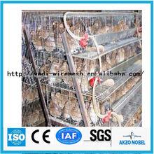 de jaulas para codornices de fábrica