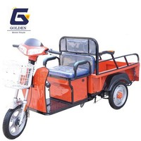 48V New Electric Tricycle for Cargo(GC13)