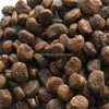 ginseng seeds planting seeds with high germination rate for different types of seeds