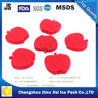 Food Use and Thermal Type Hard ice pack for kid's lunch bag