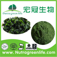 Normal Spirulina Powder, Organic Spirulina Powder, rich in Protein 60%~70%
