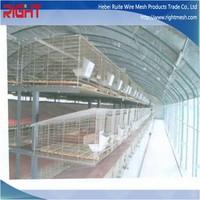commercial luxury meat rabbit farming cages