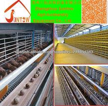 Equipos para alimentación de codornices a gran escala totalmente automática