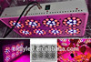 3 watt High Power 300w Red LED Plant Grow Light equivalent to 600w HPS Bulbs