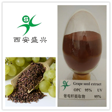 hot selling Grape seed extract OPC reddish brown powder