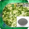 Radiotolerant 100% Natural Spirulina Extract Plant Extract Powder in bulk