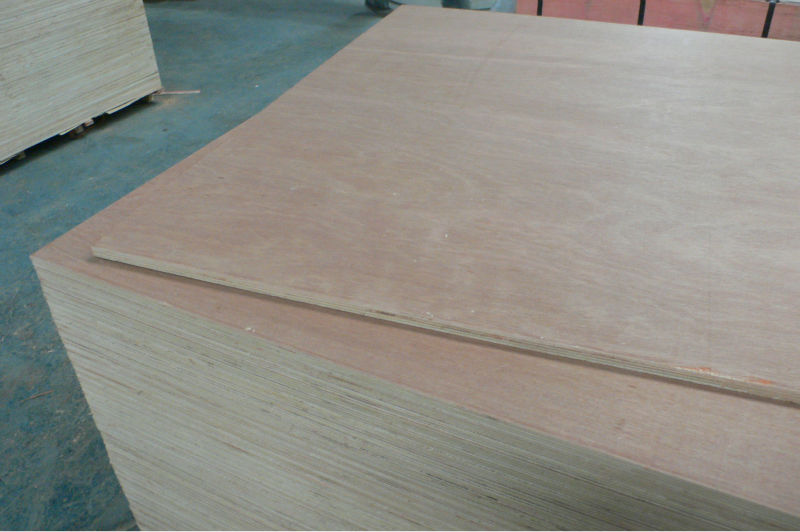 High quality natural birch veneer plywood with competitive for Birch wood cost