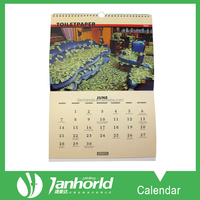 Factory Wholesale Customized monthly A3 Size Wall Calendar with Wire-O Bound