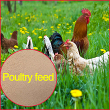 Poultry feed , poultry antibiotics