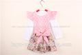 Nuevo diseño de bebé de algodón niñas vestidos de navidad/vestido de cumpleaños para la niña