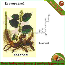 100% natural trans resveratrol herbal plant extract