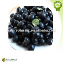 100% color natural, anthocyanidins, negro extracto de soja