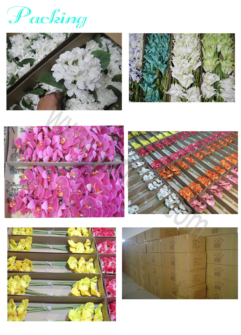 Factory Direct Indian Rose Flower Bunches With 10 Head Flower Buy