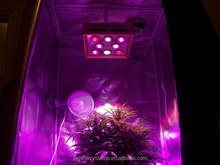 2014 new product Grow sun growing /vegatation /flowering changeable full spectrum cob chip plant led grow light