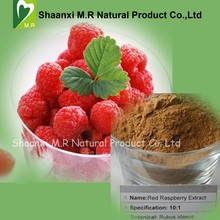 Factory Supply Raspberry Extract 10:1