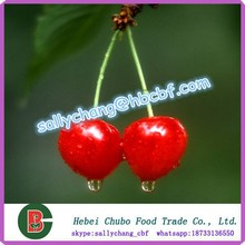 canned cherry in syup