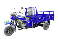 Top three wheel motorcycle made in china