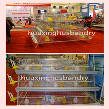 New high quality broiler chick rate/professional poultry equipment for broilers