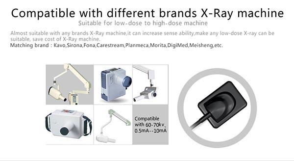 06 Digital dental x ray sensor YSDEN-500.jpg