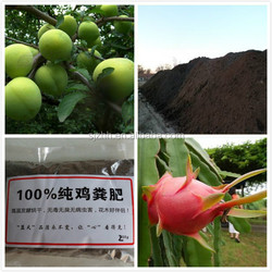100% natural chicken manure