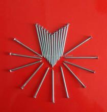 Common Nail Iron Nail Factory (ISO9001)