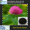 Natural P.E. 40% Red Clover Isoflavones Powder